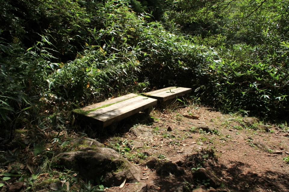 160821_bench