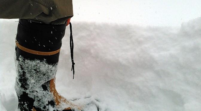 20160118 大雪っ♪