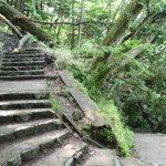 湯滝横階段、通行可能。