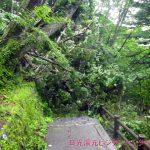 湯滝横階段、通行止め
