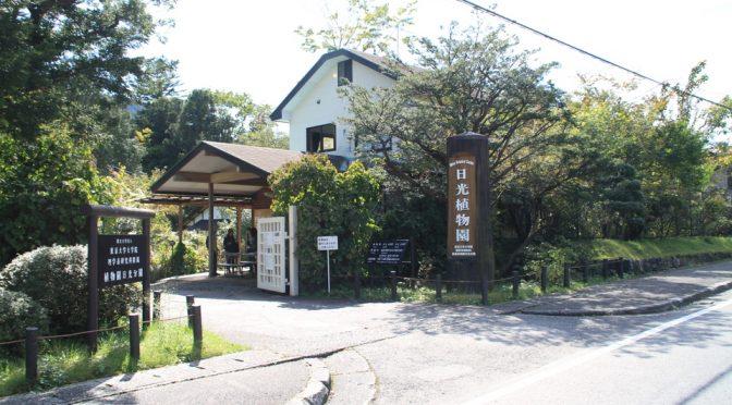 紅葉ガイドツアー@日光植物園