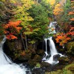 竜頭滝の紅葉盛り_16年10月17日