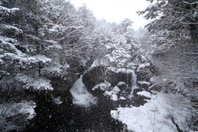 161124_ryuuzu