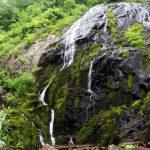 久々に緑滝