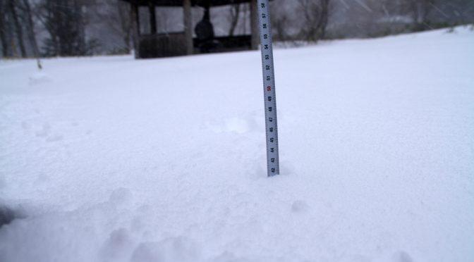 雪とスキーとスノーシュー