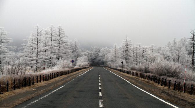 霧氷そして雪