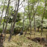 赤岩滝・男体山・男体山