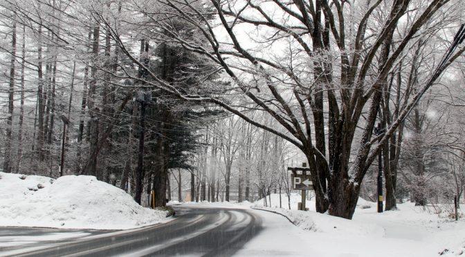 雪だぁ~!・・・
