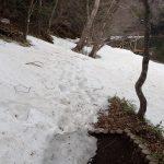 アチコチ残雪状況