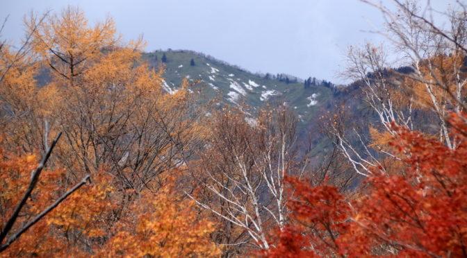 2019男体山閉山と雪